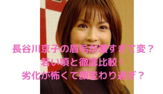 【画像】長谷川京子の眉毛が濃すぎて変?若い頃と比較!劣化が怖くて顔変わりすぎ?
