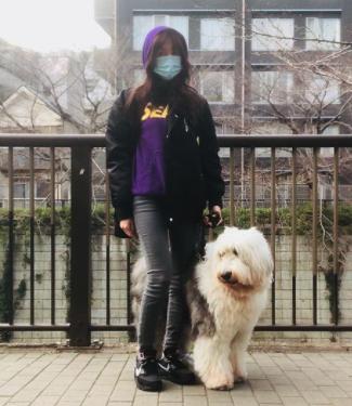 工藤静香 犬の散歩