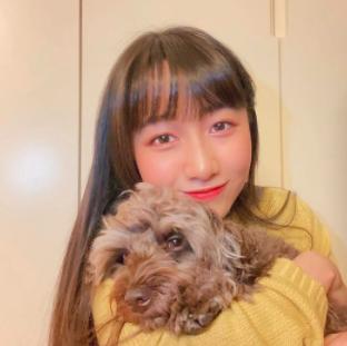 木村拓哉 犬 何匹 犬種 値段 cocomi