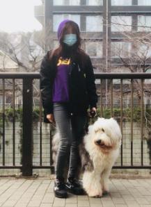 木村拓哉 犬 何匹 犬種 性別 ヒカル