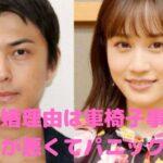 前田敦子 勝地涼 離婚理由 離婚原因 車椅子 なぜ 靭帯損傷 性格が悪い ヒステリー パニック障害