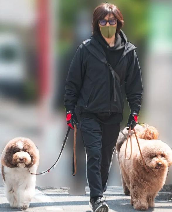 稲葉浩志 自宅 松濤 犬