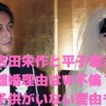 吉田栄作 平子理沙 離婚理由 馴れ初め 子供