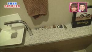 平野紫耀 自宅 トイレ